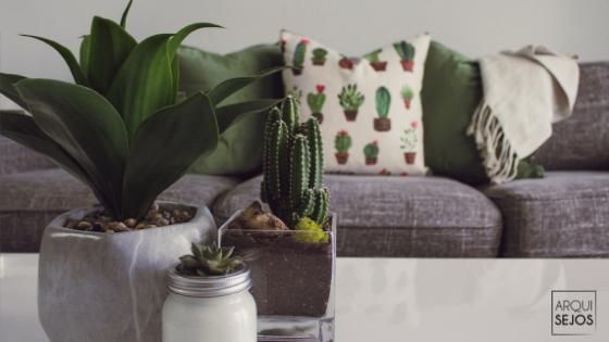 interiorismo y decoracion sencillo mantenimiento